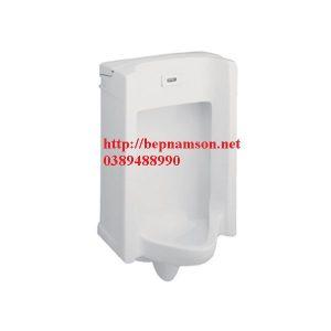 Bồn tiểu cảm ứng WP-6506
